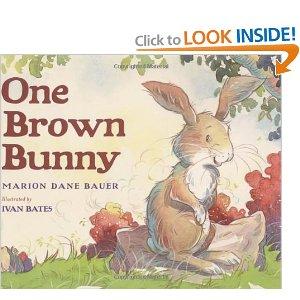 Bunny One Brown Bunny
