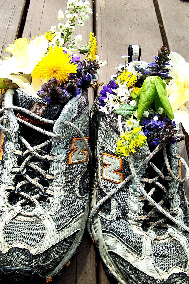 NC shoe centerpiece