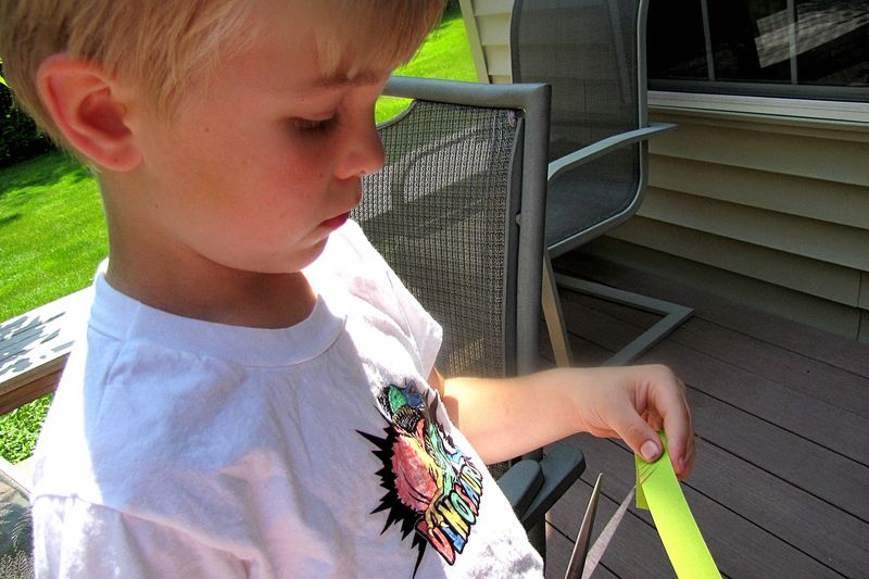 Bug catcher grass cutter