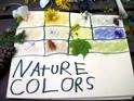 NC nature colors