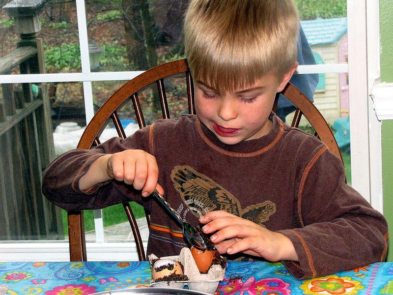 Seed starter coby filling egg
