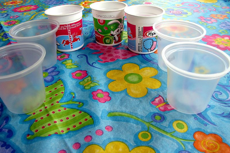 Seed starter yogurt cup