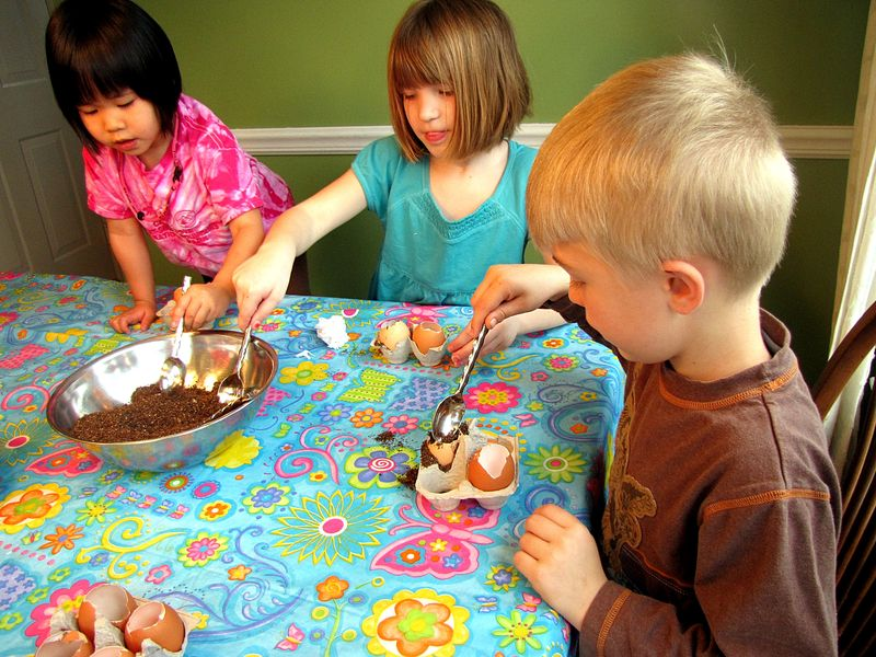 Seed starter 3 kids filling