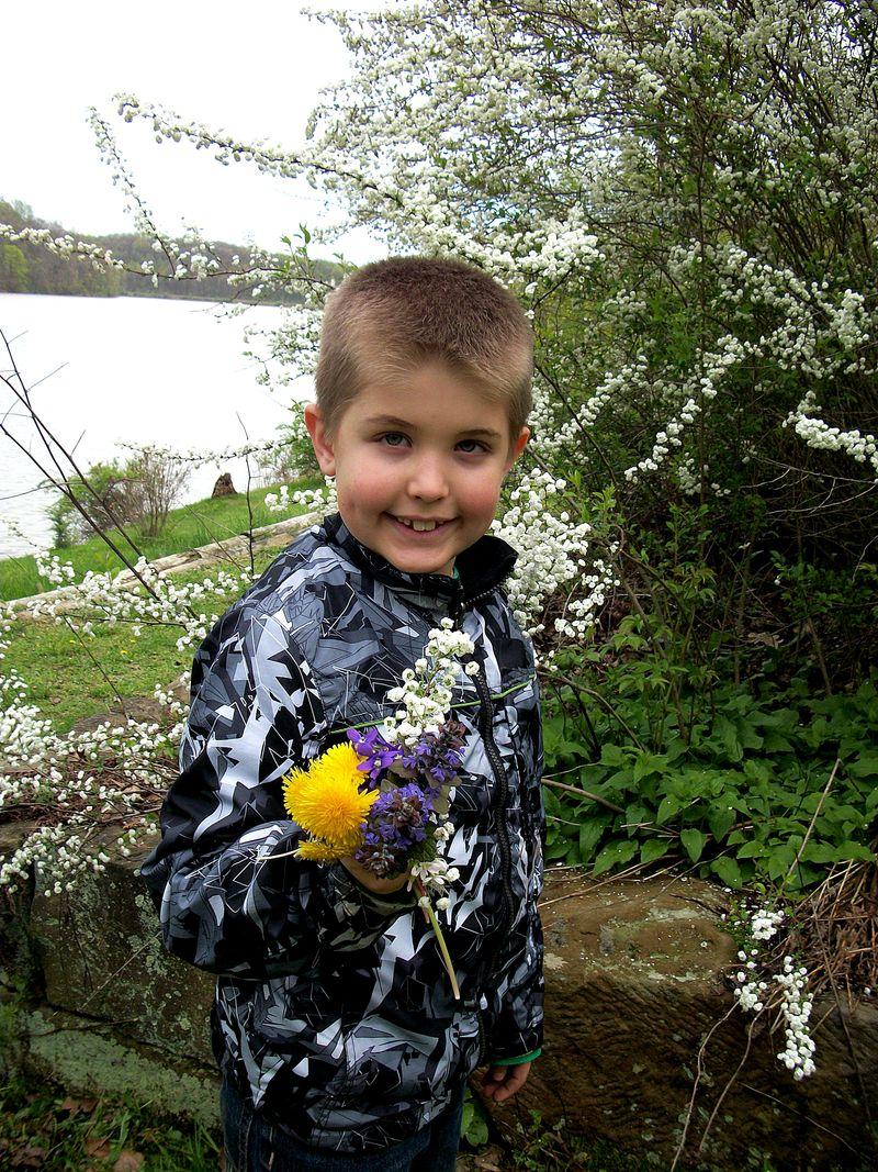 NC picking flowers