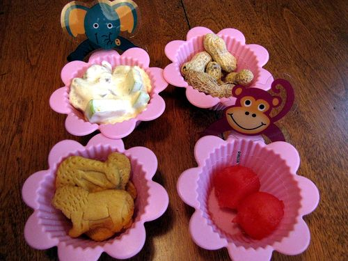 Zoo muffin tin lunch muffin cups