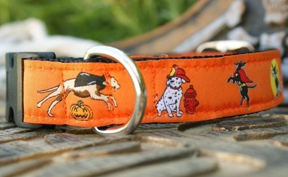 Etsy halloween dog collar from fairy tail collars